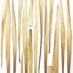 LAIN Palm Leaf 01